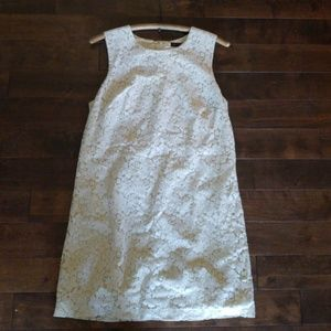The Limited Beige Sleeveless Lace Dress